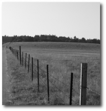 fenceposts at ucsc