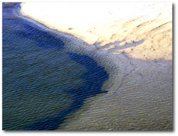 inter tidal
